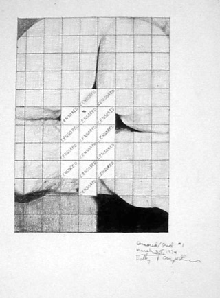 Betty Tompkins, censored_grid #1 1974.jpeg