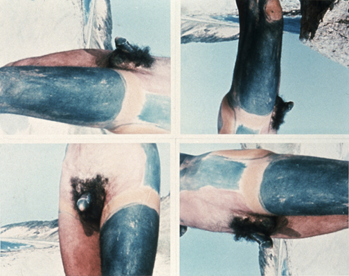 Eunice Golden, Reorientation of the Human Figure at Scheduled Intervals, 1973